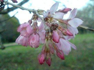 2010-03-21T17_54_16-91955.jpg