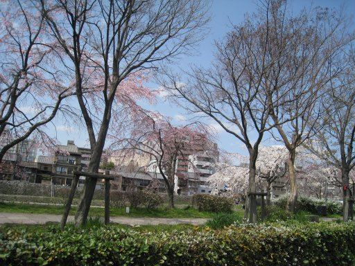 2010_0322_kyoto (1).JPG